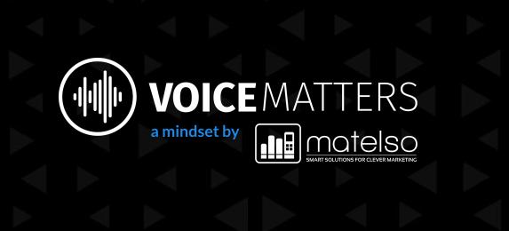 voicematters-mindset
